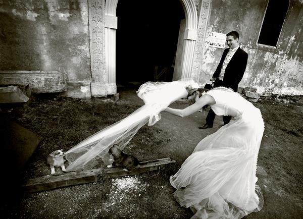 fotografi-nunti-9